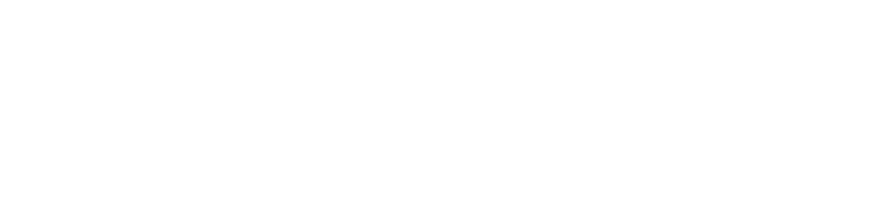 Logo Basketdocs - Deutsche Basketballärzte e. V.